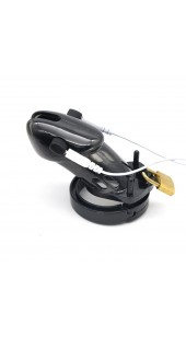 ECB Standard Size Electrosex Chastity Devices in Clear or Black.