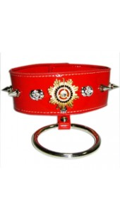 Red Leather Collar with Red and Gold detail with Chain Lead.